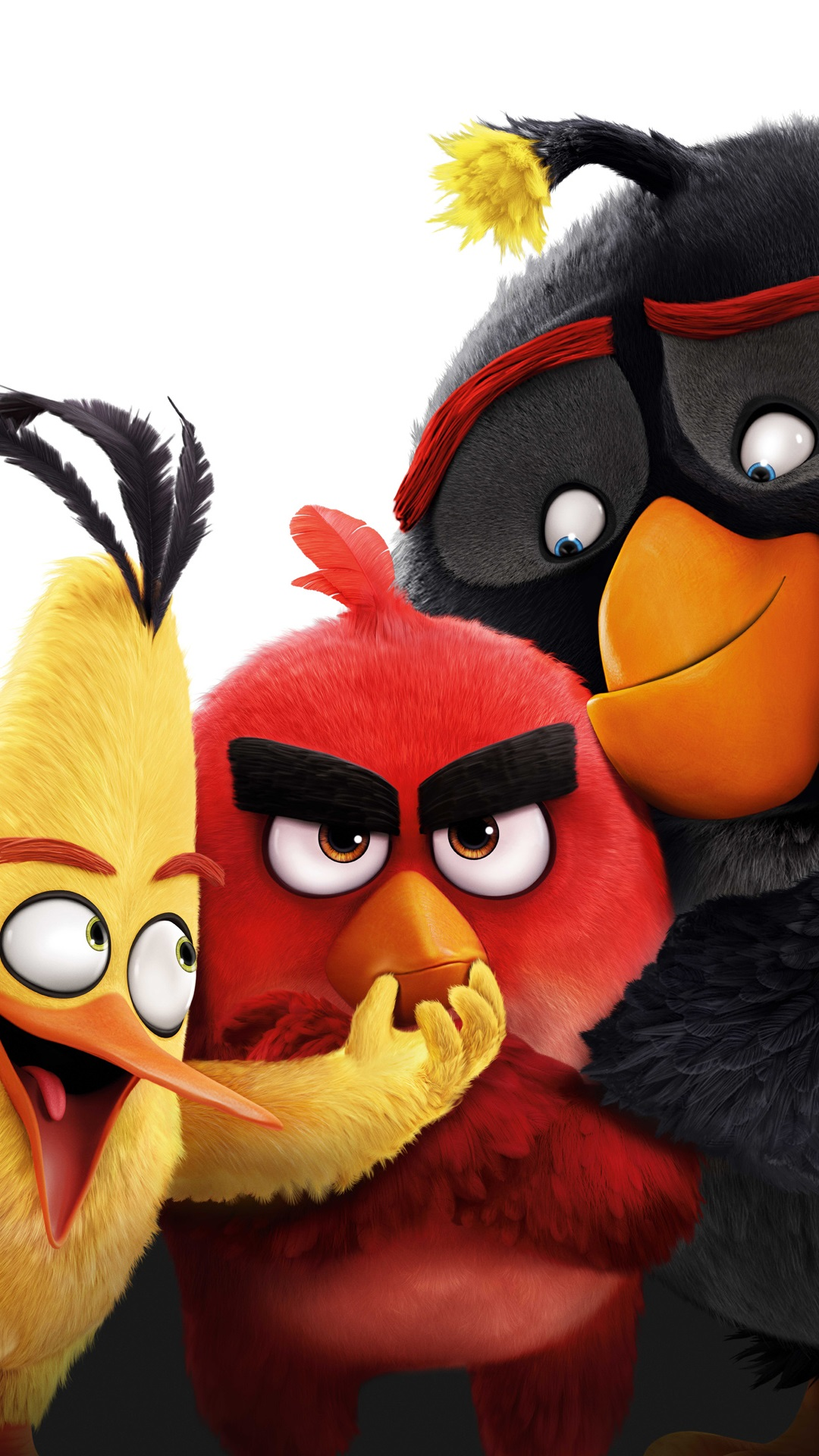 Simple Wallpaper Movie Iphone 5 - Angry-Birds-movie-2016_1080x1920_iPhone_6_Plus_wallpaper  Perfect Image Reference_948745.jpg