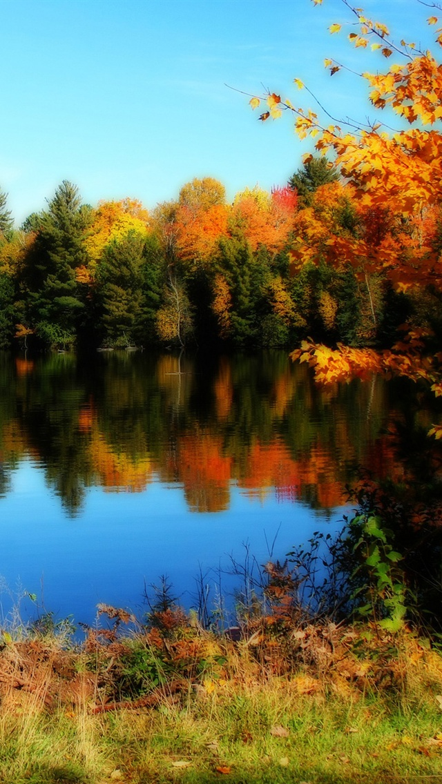 Lake And Trees Of The Beautiful Fall Iphone X 8 7 6 5 4 3gs