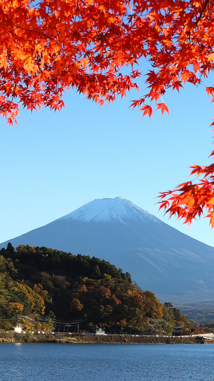 Japan Mount Fuji Lake Trees Leaves Autumn Iphone X 8 7