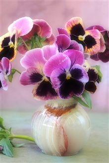 Pink flowers, circular vase of violets iPhone Wallpaper Preview