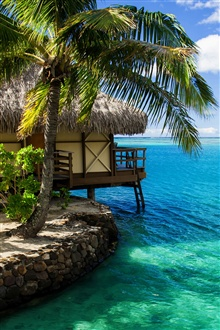 Maldives, hut, palm tree, sea water iPhone Wallpaper Preview