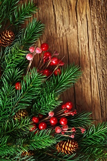 New Year, pine boughs, red decorative balls iPhone Wallpaper Preview