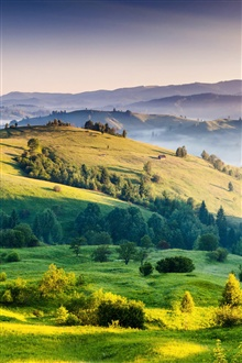 Nature landscape, sunrise, hills, trees, grass, fog iPhone Wallpaper Preview
