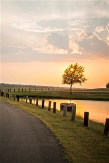 Nature landscape, sunset, tree, road, river, fence, clouds iPhone Wallpaper Preview