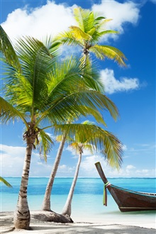Palm trees, boat, tropical sea, beach, clouds iPhone Wallpaper Preview
