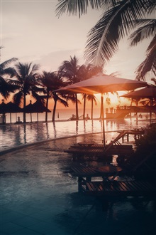 Pool, water, beach, palm trees, sunset iPhone Wallpaper Preview