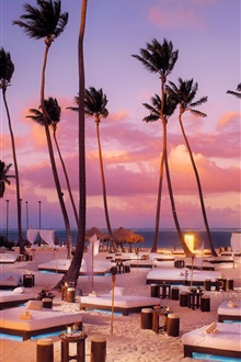 Beach, sunbeds, palm trees, sunset iPhone Wallpaper Preview