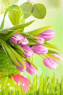 Purple tulips, grass, leaves, flowers, spring, eggs, Easter iPhone Wallpaper Preview