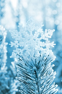Snowflake, pine tree, winter, snow iPhone Wallpaper Preview