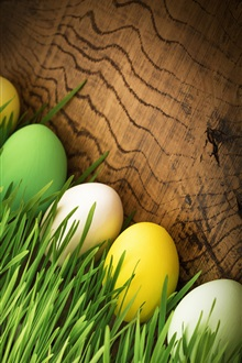 Happy Easter, eggs, grass iPhone Wallpaper Preview