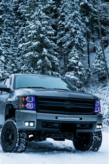 Chevrolet pickup in winter, snow, trees iPhone Wallpaper Preview
