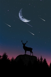 Deer, silhouette, moon, night iPhone Wallpaper Preview