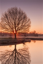 England Suffolk scenery, sunset, river, frost, trees iPhone wallpaper