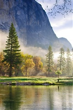 Nature morning, mountains, forest, lake, mist iPhone wallpaper