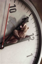 Bear clock dial, creative picture iPhone wallpaper