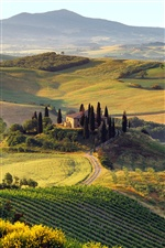 Beautiful summer landscape of Italian farm iPhone wallpaper