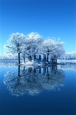 Blue winter, snow, trees, mirror lake, reflection iPhone wallpaper