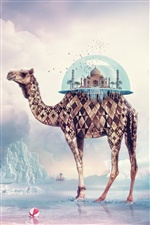 Creative design, camel India Paradise iPhone Wallpaper