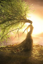 Tree wizard, the sun bright, creative design iPhone wallpaper
