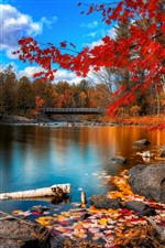 Autumn river, wooden bridge, trees and red leaves iPhone wallpaper