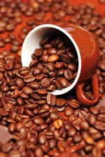 Cocoa beans and cup iPhone wallpaper