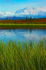 Denali National Park spring scenery, lake, mountains iPhone wallpaper