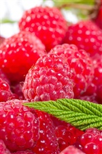 Fresh red raspberries iPhone wallpaper