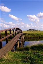 German scenery, single-plank bridge iPhone wallpaper