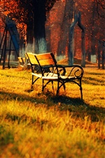 Golden autumn park, lawn, benches, sunshine iPhone wallpaper