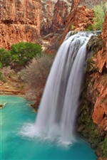 Havasu Falls, Grand Canyon National Park in Arizona iPhone Wallpaper