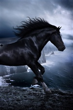 Horse in the dark iPhone wallpaper