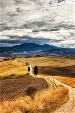 Italy Tuscany, paths, trees, hills, sky clouds iPhone wallpaper