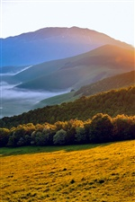 Italy Umbria morning sun, nature scenery iPhone wallpaper