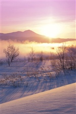 Japan winter, nature, snow, sunset iPhone Wallpaper