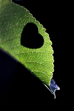 Love heart-shaped on the leaves iPhone wallpaper
