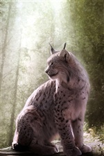 Lynx, wild cat, forest iPhone wallpaper
