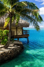 Maldives, hut, palm tree, sea water iPhone wallpaper