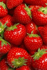 Many strawberries, red, fruit, delicious iPhone wallpaper