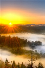 Morning mist, mountains, sunrise iPhone wallpaper