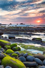 Moss stone beach sun rises iPhone Wallpaper