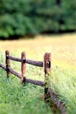Nature landscape, fence, grass, blur background iPhone wallpaper