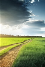 Nature scenery, fields, grass, clouds, road iPhone wallpaper