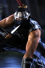 Ninja Gaiden, PC game iPhone wallpaper
