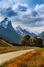 New Zealand, mountains, road, trees, grass, clouds iPhone wallpaper