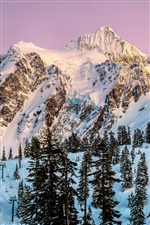 North America, Washington, Mount Shuksan, snow, winter, trees iPhone wallpaper