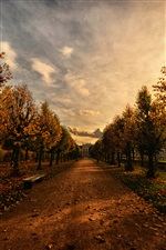 Park, path, bench, trees, autumn, dusk iPhone Wallpaper
