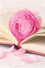 Pink rose flower with book iPhone wallpaper