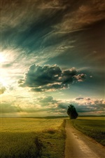 Plains landscape, fields, road, tree, sky clouds, sun rays iPhone wallpaper