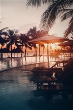 Pool, water, beach, palm trees, sunset iPhone wallpaper