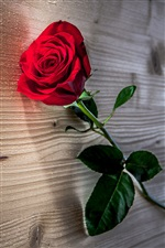 Red rose flower, wooden table iPhone wallpaper